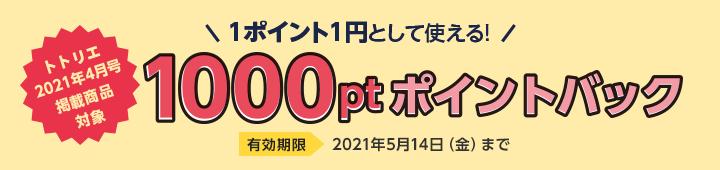ご購入サポートキャンペーン 1000ptポイントバック