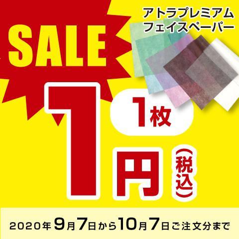 【10/7まで期間限定価格!】フェイスペーパー 1枚1円キャンペーン 500枚1セット(5色入り各100枚)